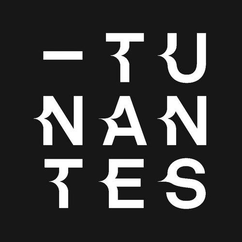 logo TU Nantes